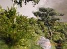 Ein Blick ins Unterholz.
