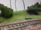 Tau auf der Wiese neben der Bahn.
