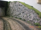 Eine weitere Felswand wird von der Pflanzenwelt erobert.