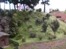 Der südliche Hang zum Wald wurde auch gestaltet.